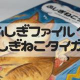 ふしぎファイル1「ふしぎねこタイガー」を読んだよ!
